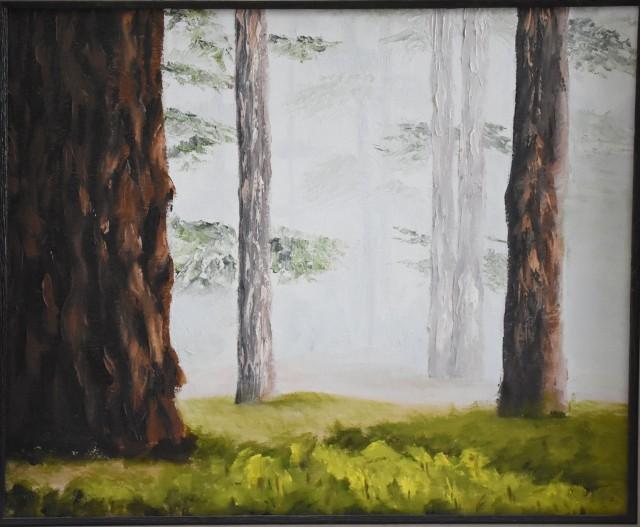 mysty_trees_1496_web